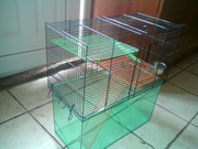 Gerbilarium for up to 3 gerbils